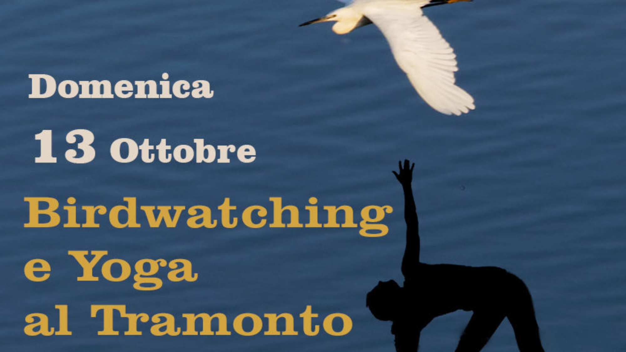 birdwatching_and_yoga